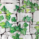 Patterned Paper – White Brick with Ivy