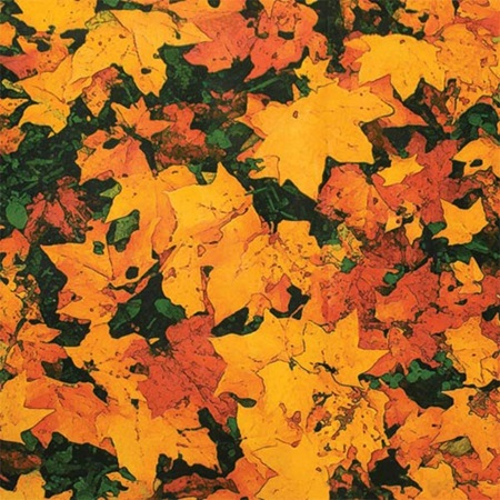 Patterned Paper – Autumn Leaves