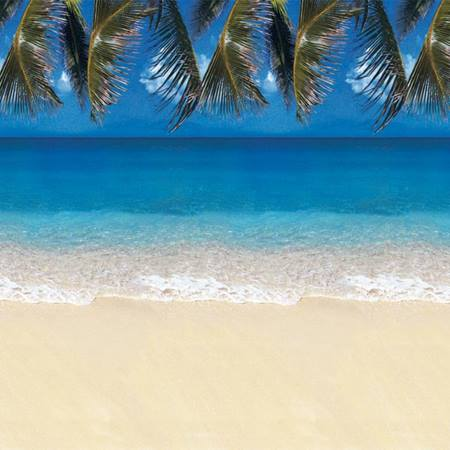 Tropical Beach Flat Background Paper