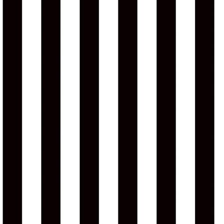 Black and White Striped Decorating Paper