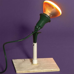 Flood Light with Wooden Base