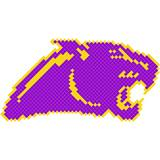 Panther  Design Fence Decoration