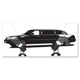 Black-and-White Mural - Spotlight Limousine