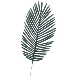 Artificial Fern Leaf