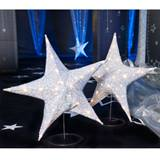 Our Special Star Large Stand Kit