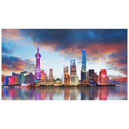 Photo Mural - Shanghai Skyline