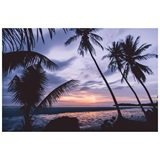 Photo Mural - Tropical Sunset