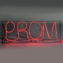 Uppercase Prom Sign