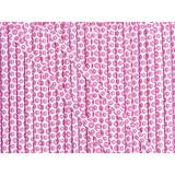 Candy Powder-filled Sassy Straws - Watermelon
