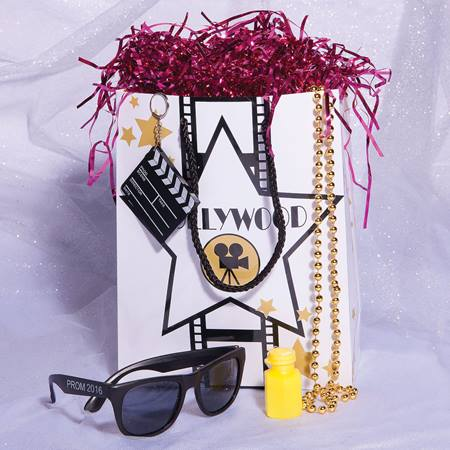 Fame and Fortune Hollywood Swag Bag
