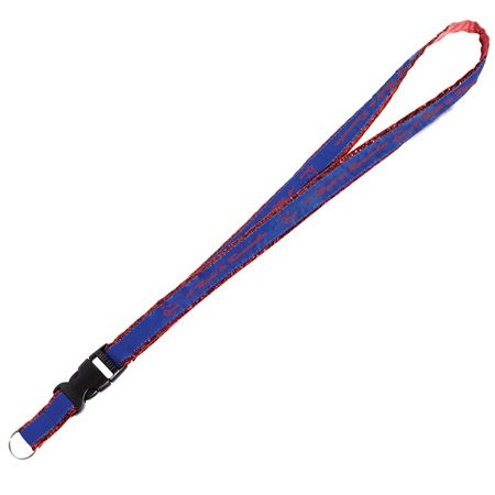 Metallic Edge Detachable Lanyard With Split Ring