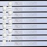 Prom Candidate Sash Set - White with Silver Foil
