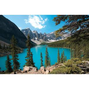 Morraine Lake Photo Wall Mural