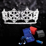 Tiaras and Tech Kit - Winter Queen Tiara